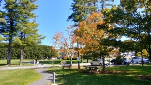 Fall color on trees at the Norman Rockwell Museum