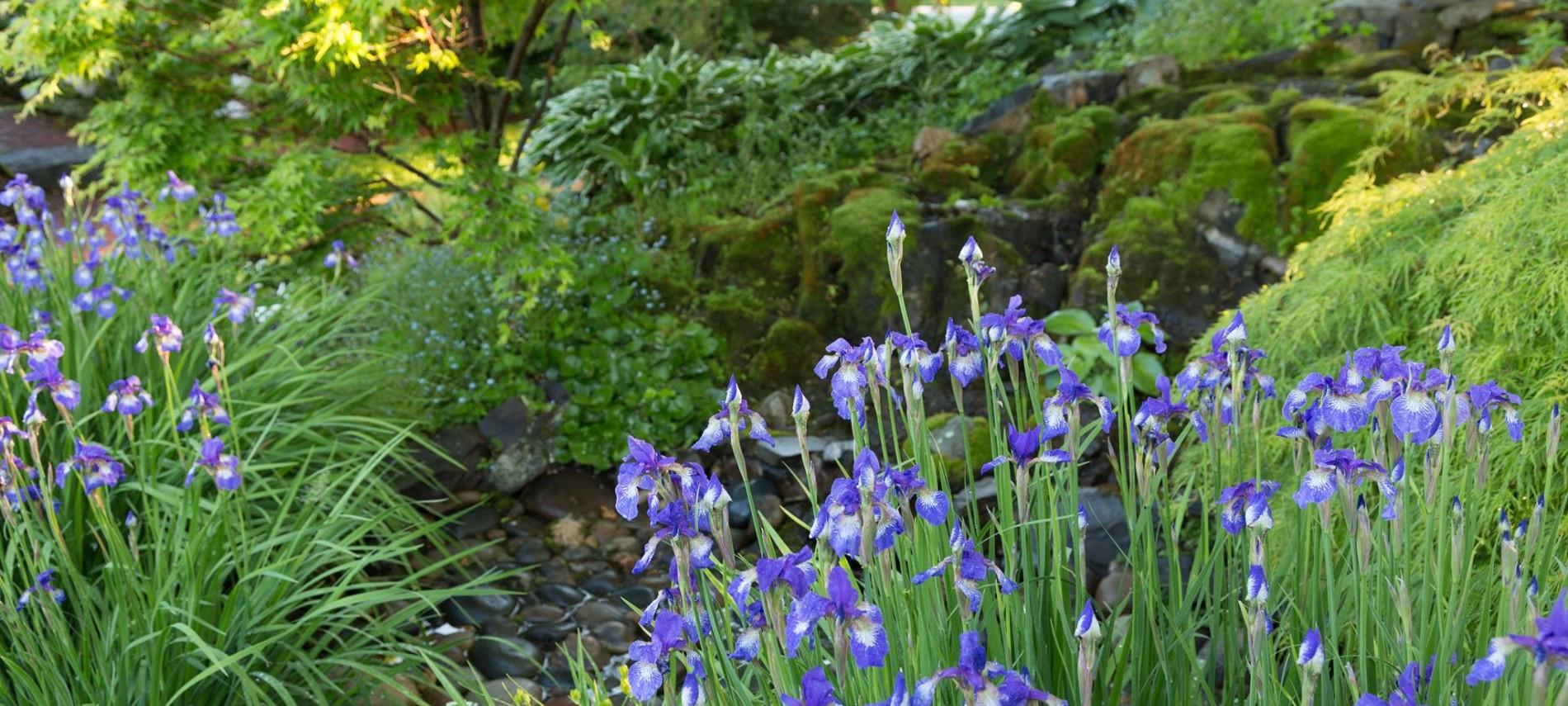 Gardens at Captain Jefferds Inn