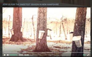 Maple sugaring season at Chesterfield Inn