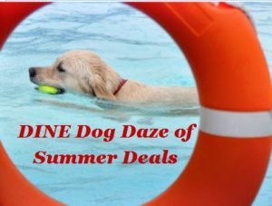 Dog Days of Summer Deals - Dog with tennis ball