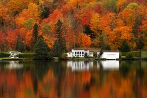 View of peak fall foliage