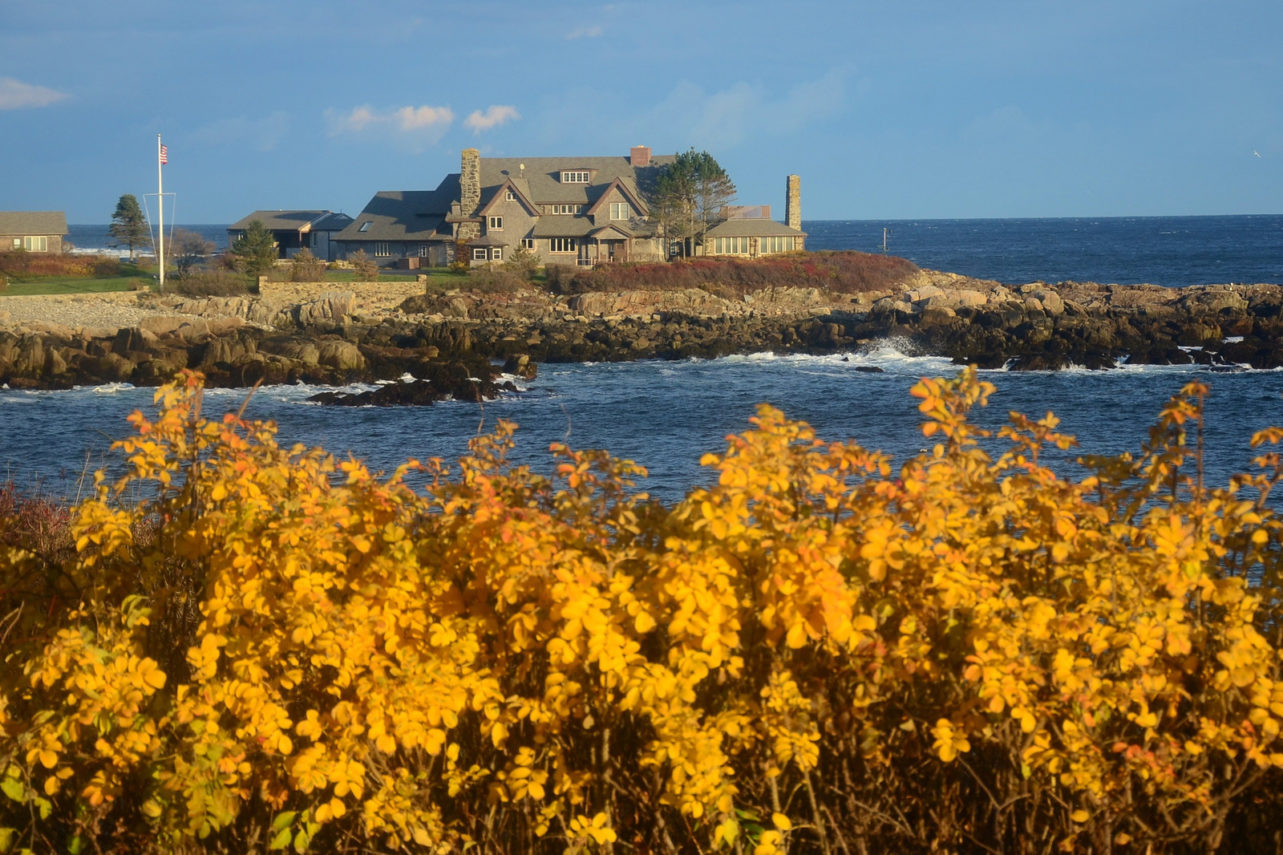 View of Walkers Point in Maine with yellow leaves in foreground.