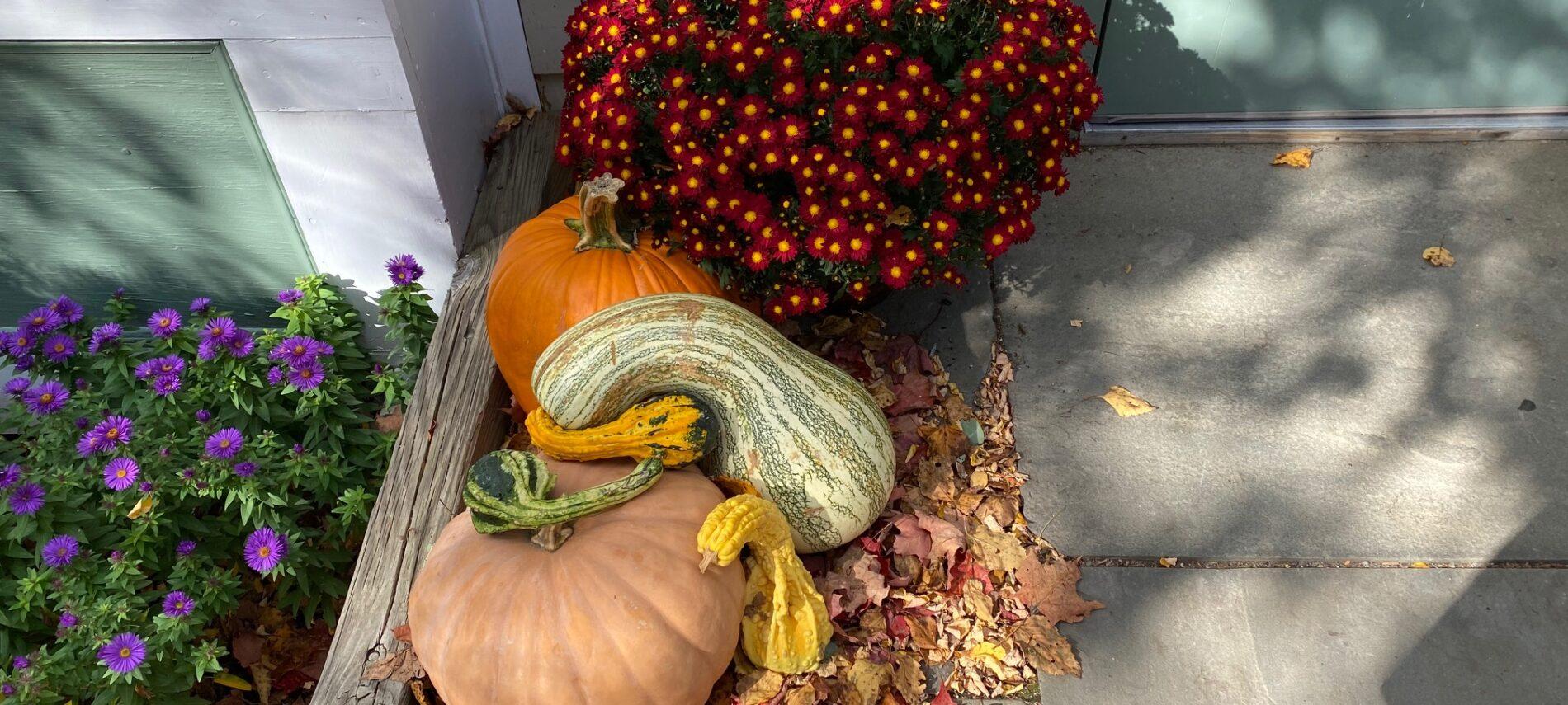 Fall at Chesterfield Inn