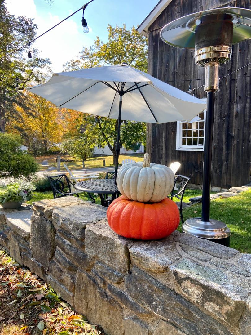 pumpkins at Grafton Inn