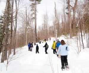 snowshoe tour at Grafton Ponds near Grafton Inn