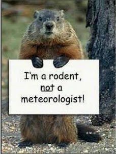 Groundhog with sign