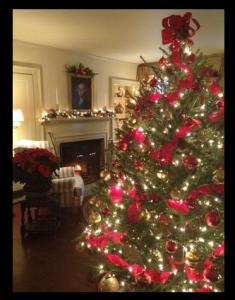 Christmas tree at Grafton Inn