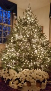 Rabbit Hill Inn Christmas Tree in the Parlor with 1800 white lights