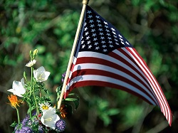 Photo, close-up of an American flag with flowers, Color