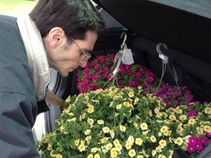Brian Mulcahy of the Rabbit Hill Inn selects hanging baskets for the porch