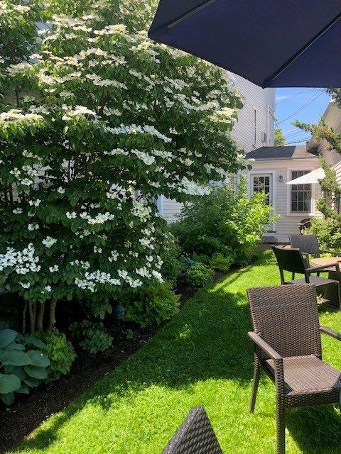 Flowering bushes surrounding the Harbor Light Inn