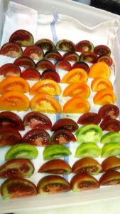 Photo of colorful tomatoes at Rabbit Hill Inn
