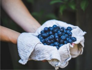 Blueberry Gazpacho recipe from Rabbit Hill Inn