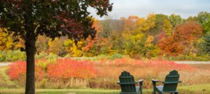 Adirondack chairs in an open field of fall colors
