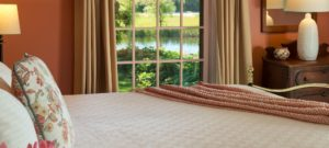 view across a king bed looking out a window