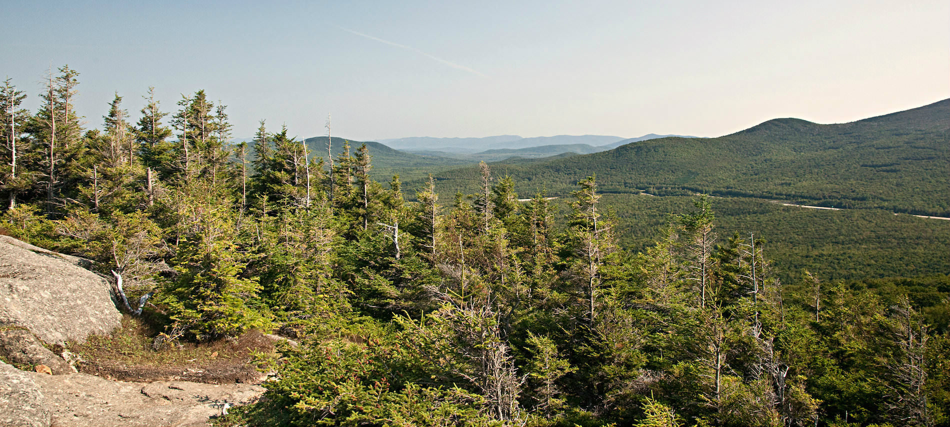 Top of cliff overlooking miles of hills forested with pine trees.