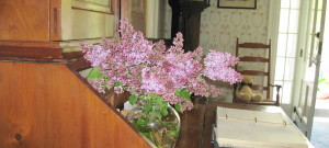 A vase of purple lilacs on a wooden desk.